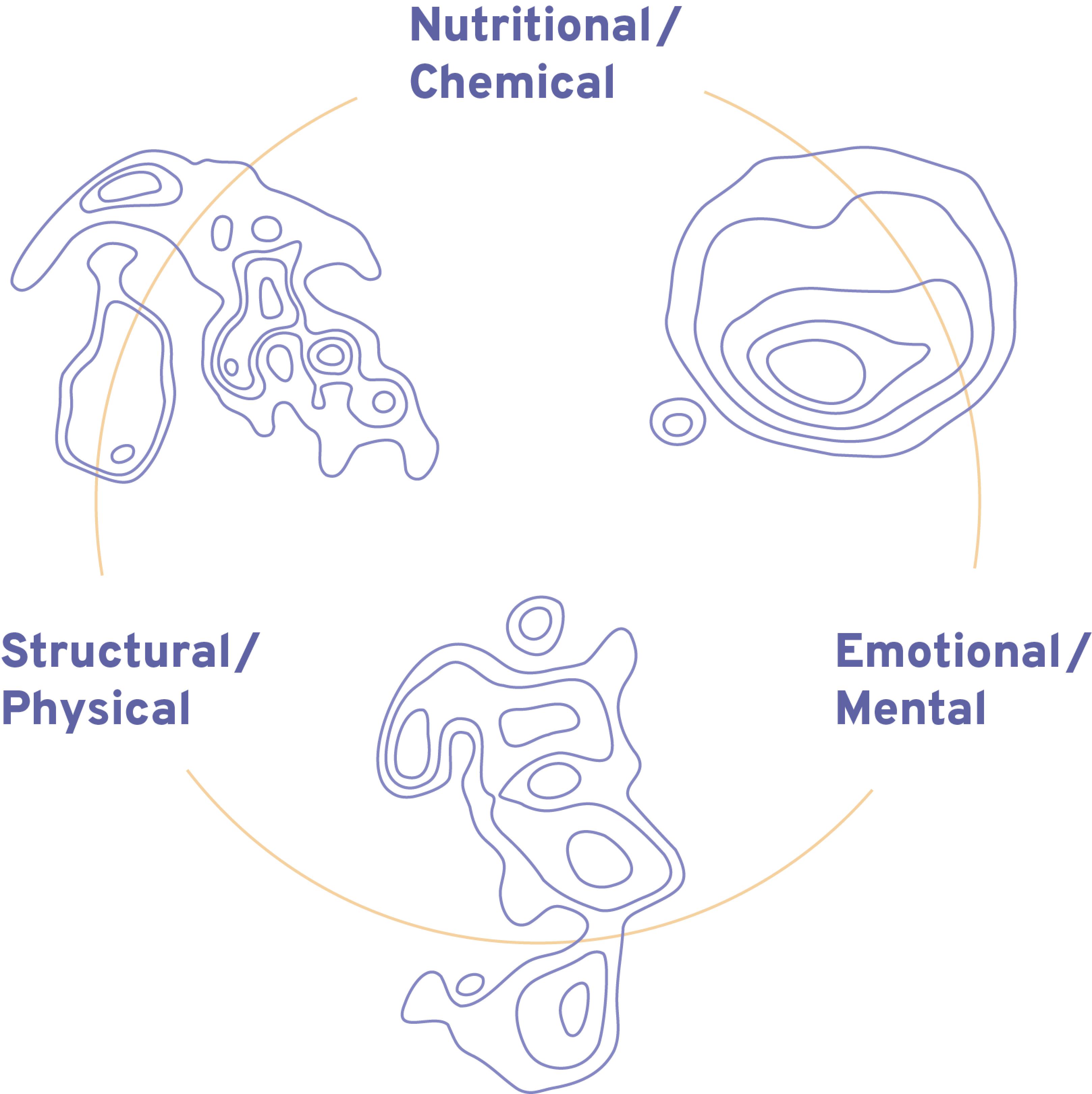 Integrative Triad of Health